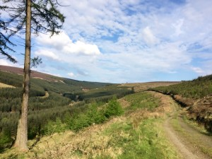 Glenafelly Walk Slieve Blooms Laois Offaly Ireland