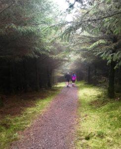 Glinsk Castle Looped Walk Kinnitty Offaly Slieve Blooms Ireland