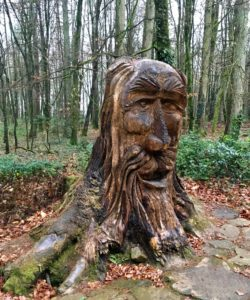 Tree trunk Art Kinnitty Castle Offaly Slieve Bloom Mountains Ireland