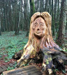 Tree trunk art Kinnitty Castle Slieve Blooms Offaly Ireland