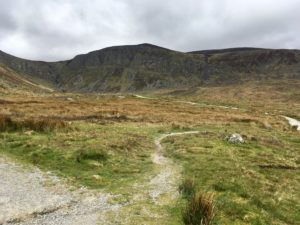 The path to Mahon Falls Waterford Ireland's ancient east