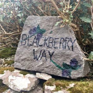 Kerry way walking route Waterville - Derrynane Wild Atlantic Way Kerry Ireland