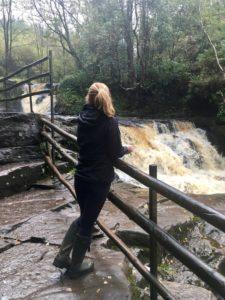 Glenbarrow Slieve Bloom mountains Laois Ireland