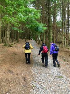 Kilclooney wood walk carpark R676 Carrick on Suir Dungarven Comeraghs Coumshingaun trail lough