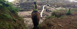Horse riding Kerry Blackwater stables Ring of Kerry Iveragh Peninsula What to do on the ring of Kerry what to do in Kenmare What to do in Sneem Wild Atlantic Way