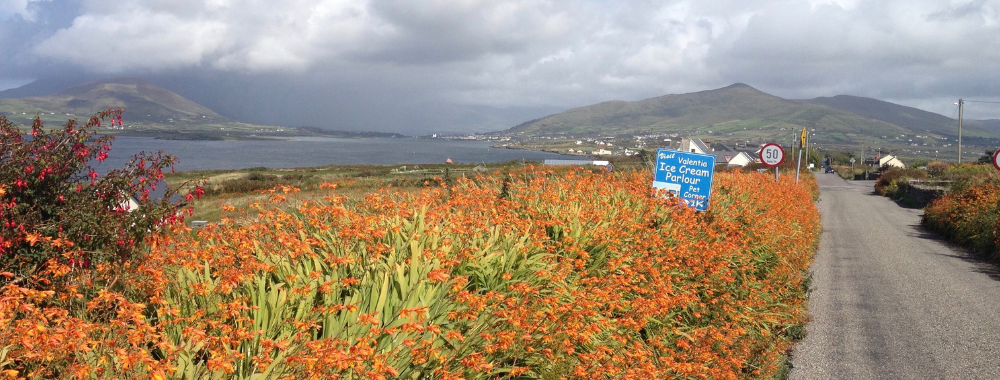 Valentia Island Kerry Ireland What to see in Kerry what not to miss do not miss Valentia Knightsown Chapeltown Fogher Cliffs Geokaun Valentia ice cream Bray Head