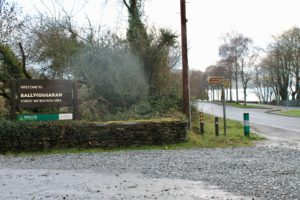 Ballycuggaran Forest Entrance Killaloe Clare Ireland