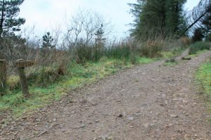 walking Moylussa county top clare Ireland