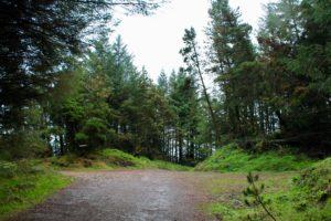 walking trails ireland moylussa clare