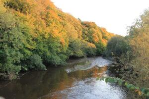 Autumn sunsetting at Ballyrafton woods and the river dinan from the tower bridge Ballyrafton Kilkenny